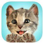 Kleines Kätzchen – meine Lieblingskatze bis nächsten Donnerstag als App der Woche gratis